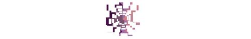 CAML_Logo_Bilingual_white